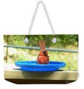 Cardinal Frisbee Weekender Tote Bag