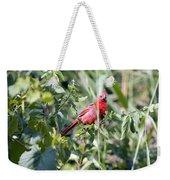 Cardinal In Bush I Weekender Tote Bag