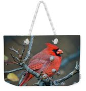 Cardinal In The Berries Weekender Tote Bag