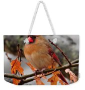 Cardinal In The Rain Weekender Tote Bag