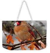 Cardinal In The Rain Weekender Tote Bag