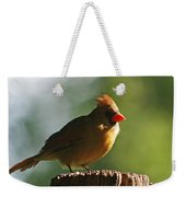 Cardinal Light Weekender Tote Bag