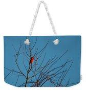 Cardinal Morning Weekender Tote Bag