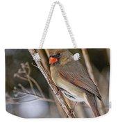 Cardinal Pictures 50 Weekender Tote Bag
