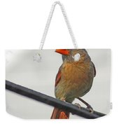 Cardinal Young Female Weekender Tote Bag