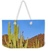 Cardon Cactus In Bahia Kino-sonora-mexico Weekender Tote Bag