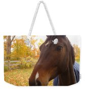 Care Free Country Weekender Tote Bag by Lingfai Leung