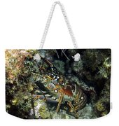 Caribbean Reef Lobster On Night Dive Weekender Tote Bag