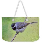 Carolina Chickadee On Angled Perch Weekender Tote Bag