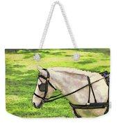 Carriage Pony Weekender Tote Bag