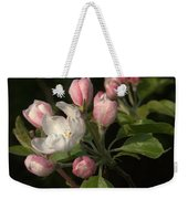 Cascade Of Apple Blossoms Weekender Tote Bag