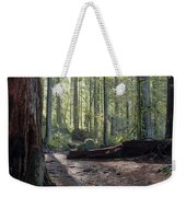 Cascades Forest Path Weekender Tote Bag
