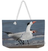 Caspian Tern Giving Fish To Mate Weekender Tote Bag