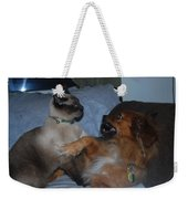 Cat And Dog Fight Weekender Tote Bag