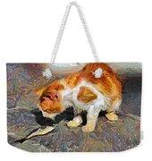 Cat  And Fish Weekender Tote Bag