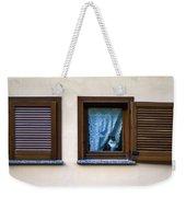 Cat At The Window Weekender Tote Bag
