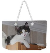 Cat Boy Weekender Tote Bag
