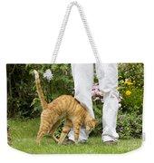 Cat Brushing Against Legs Weekender Tote Bag