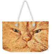 Cat Face Close Up Portrait. Painted Effect Weekender Tote Bag