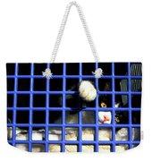 Cat In Pet Carrier Weekender Tote Bag