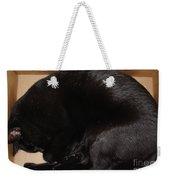 Cat In The Box Weekender Tote Bag