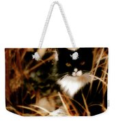 Cat In The Golden Grass Weekender Tote Bag
