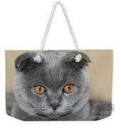 Cat Martin Weekender Tote Bag