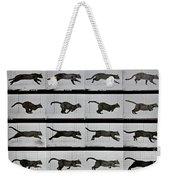 Cat Running Weekender Tote Bag