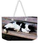Cat Sleeping On Bench Weekender Tote Bag
