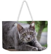 Cat Stretch Weekender Tote Bag
