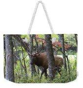 Cataloochee Bull Elk Weekender Tote Bag