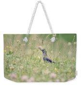 Catbird In The Wildflowers Weekender Tote Bag