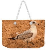 Catching A Tail Wind Weekender Tote Bag