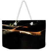 Catching Some Shade 17197 Weekender Tote Bag