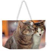 Cats Weekender Tote Bag