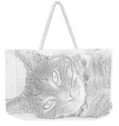 Cat's Eye Weekender Tote Bag