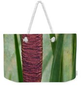 Cattail With Texture Weekender Tote Bag
