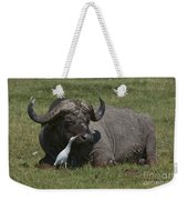 Cattle Egret With Cape Buffalo Weekender Tote Bag