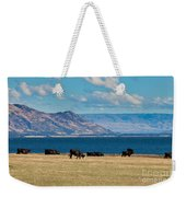 Cattle Grazing At Hawea Lake In Southern Alps In New Zealand Weekender Tote Bag