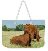 Cattle Grazing In Field Weekender Tote Bag