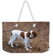 Cavalier Dog Weekender Tote Bag