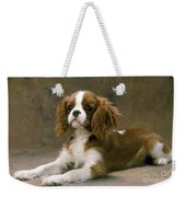 Cavalier King Charles Spaniel Dog Lying Weekender Tote Bag