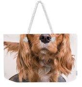 Cavalier King Charles Spaniel Puppy Weekender Tote Bag