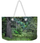 Cedar Along The Trail Of Cedars Glacier National Park  Weekender Tote Bag