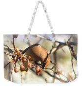 Cedar Waxwing - Img_0010-7x5 Weekender Tote Bag