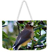 Cedar Waxwing In Tree 030515a Weekender Tote Bag