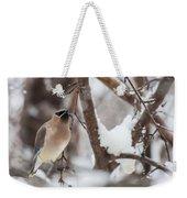Cedar Waxwing In Winter Weekender Tote Bag
