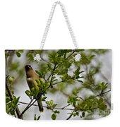 Cedar Waxwing Pictures 15 Weekender Tote Bag