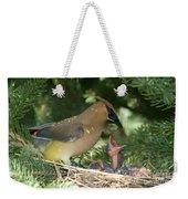 Cedar Waxwings Weekender Tote Bag