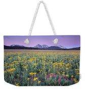 Central Idaho Color Weekender Tote Bag